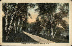 Scene Near Livingston Manor