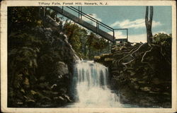 Tiffany Falls, Forest Hill