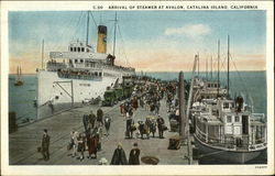 Arrival of Steamer at Avalon Postcard