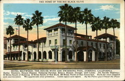 Hotel Maywood: The Home of the Big Black Olive