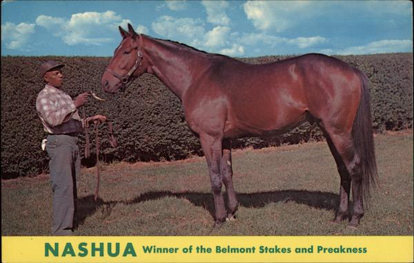 Nashua Winner of the Belmont Stakes and Preakness Skeets Meadors