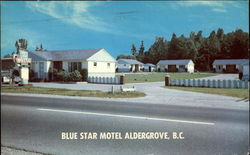 Blue Star Motel Postcard
