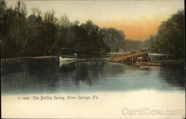 The Boiling Spring Silver Springs Florida