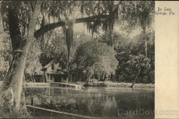 Lake and House De Leon Springs Florida