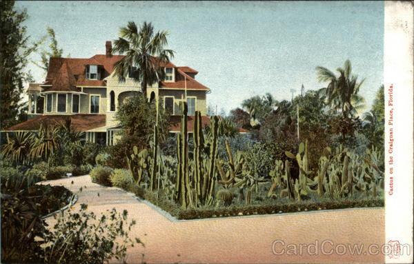 Cactus on the Craignan Place Florida