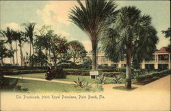 The Promenade Hotel Royal Poinciana