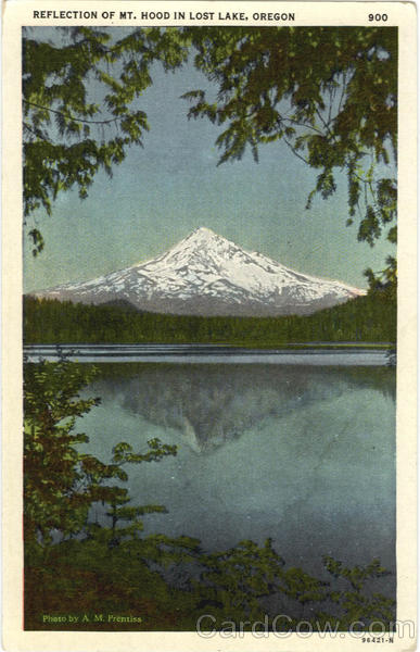 Reflection of Mt. Hood In Lost lake Oregon
