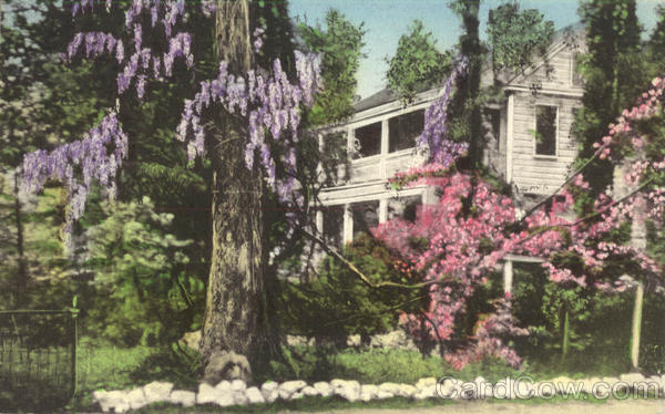 One of the Flower Town's Lovely Residences Hand Colored Summerville South Carolina