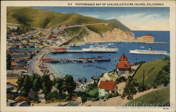 Picturesque Bay of Avalon Catalina Island California