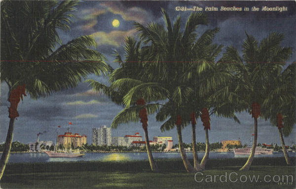 The Palm Beaches in the Moonlight West Palm Beach Florida