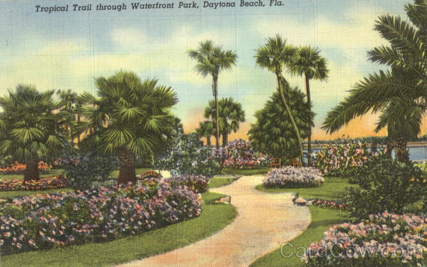 Tropical Trail through Waterfront Park Daytona Beach Florida