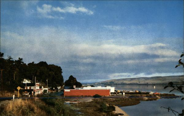 View of Town and Bay Inverness California
