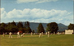 Game of Cricket, Stanley Park