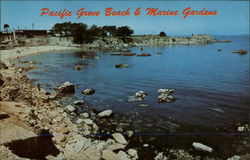 Pacific Grove Beach & Marine Gardens