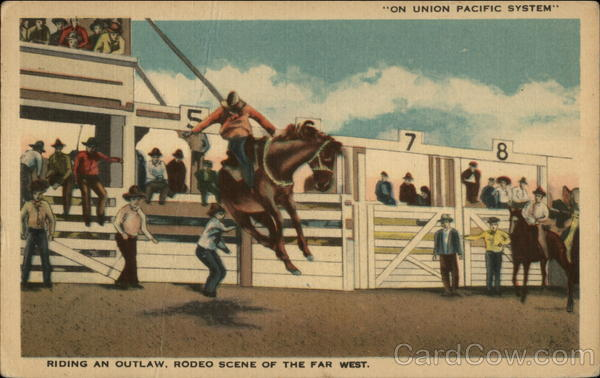 Riding an outlaw, rodeo scene of the far west Cheyenne Wyoming