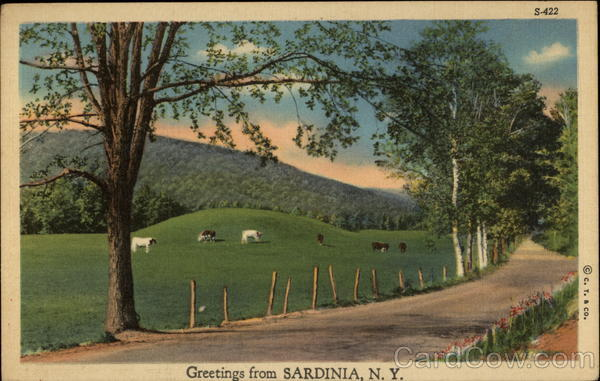 Greetings - Rural view of Patures and Hills Sardinia New York
