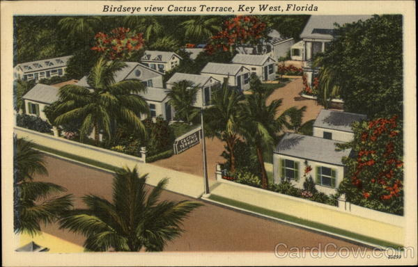 Birdseye View Cactus Terrace Key West Florida
