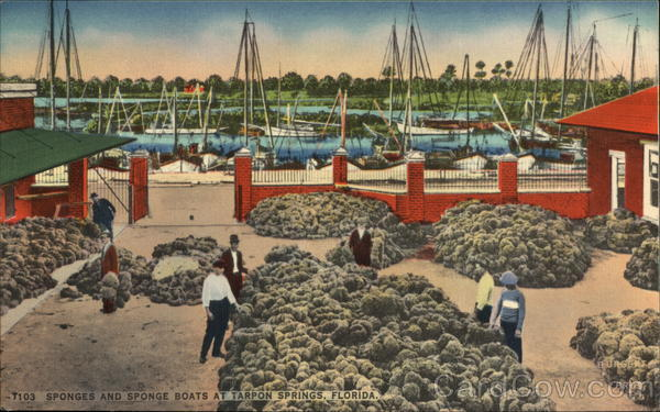 T103 Sponges and Spong Boats at Tarpon Springs, Florida
