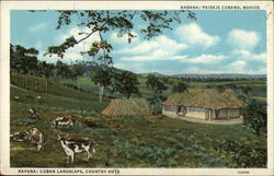 Cuban Landscape, Country Huts Postcard
