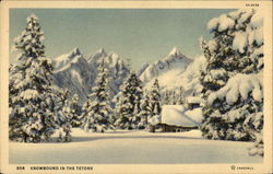 Snowbound in the Tetons