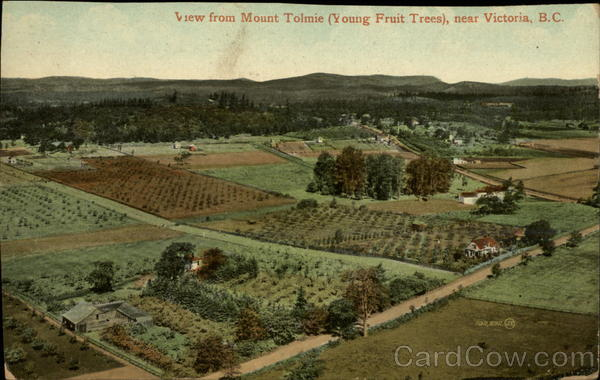 View from Mount Tolmie, Young Fruit Trees Victoria Canada