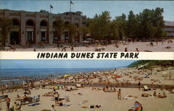 Indiana Dunes State Park Postcard