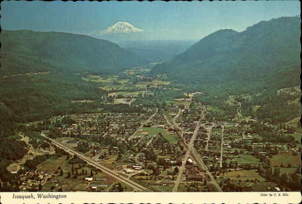Aerial View Issaquah Washington