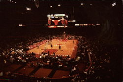 Chicago Bulls Postcard