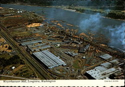 Weyerhaeuser Timber Co. Plant Postcard
