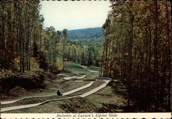 Autumn at Lutsen's Alpine Slide, Lutsen Resort