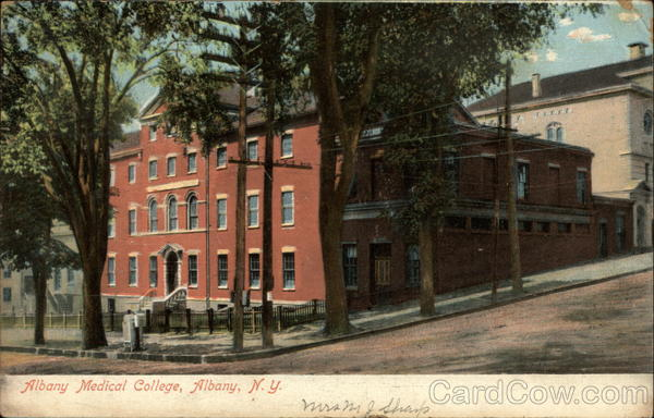 Albany Medical College New York