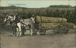 A Load of Kansas Corn