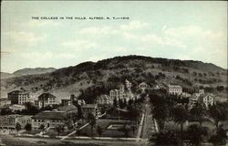 The College in the Hills