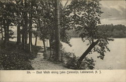 East walk along Lake Carasaljo