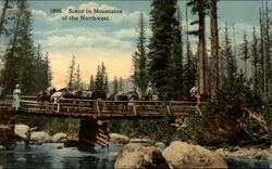 Scene in Mountains of the Northwest