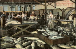 Interior Salmon Cannery Postcard