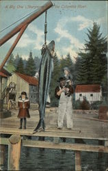 Sturgeon from the Columbia River