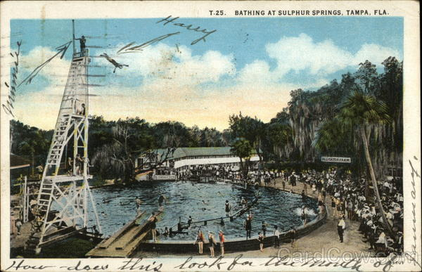 Bathing at Sulphur Springs Tampa Florida
