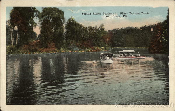 Seeing Silver Springs in Glass Bottom Boats Ocala Florida