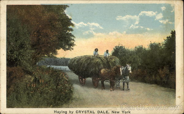 Haying by Crystal Dale New York