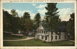 State Fish Hatchery, Old Forge, N.Y., Adirondack MTS