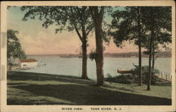 River View of the Toms River