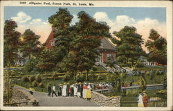Alligator Pool, Forest Park Postcard
