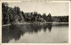 A Beautiful View of Tully Lake