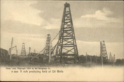 A Rich Producing Field of Oil Wells