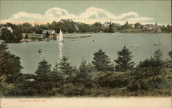 View of Lake Postcard