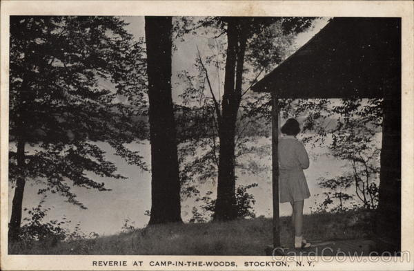Reverie at Camp-In-The-Woods Stockton New York