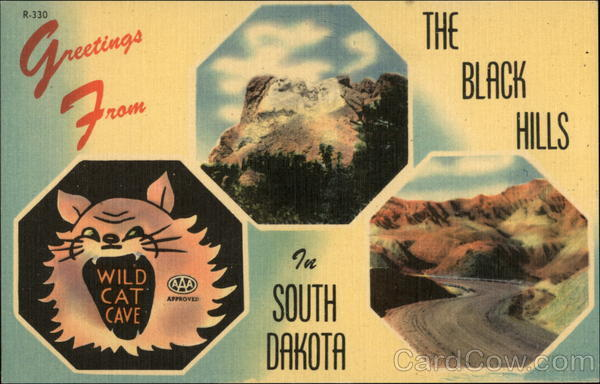 Greetings from The Black Hills in South Dakota