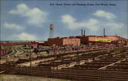 Stock Yards and Packing Plants Postcard