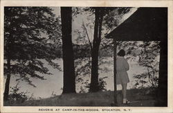 Reverie at Camp-In-The-Woods